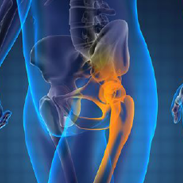 Harnessing the immune system to control prostate cancer spread to bone